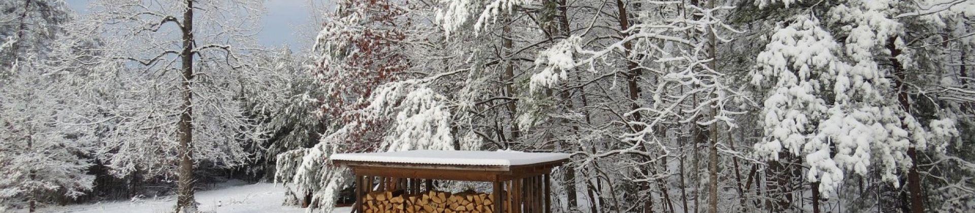 Jak zbudować drewutnię