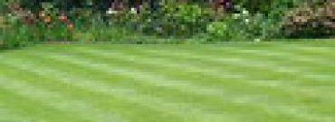 Pierwsze koszenie trawnika