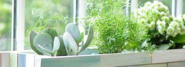 Mozaikowa doniczka na rośliny
