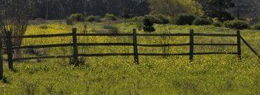 Konsekwencje nowelizacji Ustawy o ustroju rolnym – omówienie zagadnienia w pytaniach i odpowiedziach