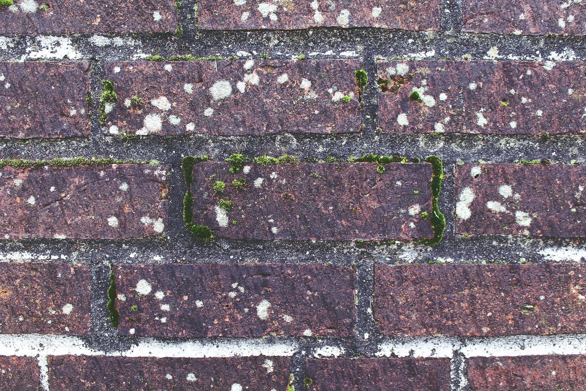 Zabrudzone cegły